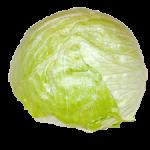 Tempelmayr - Salate
